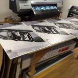 Freeborn Group 50yrs prints